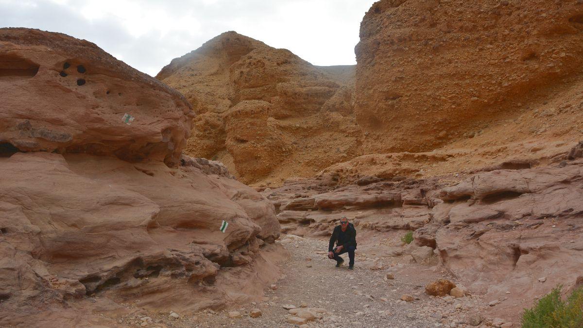 Örken