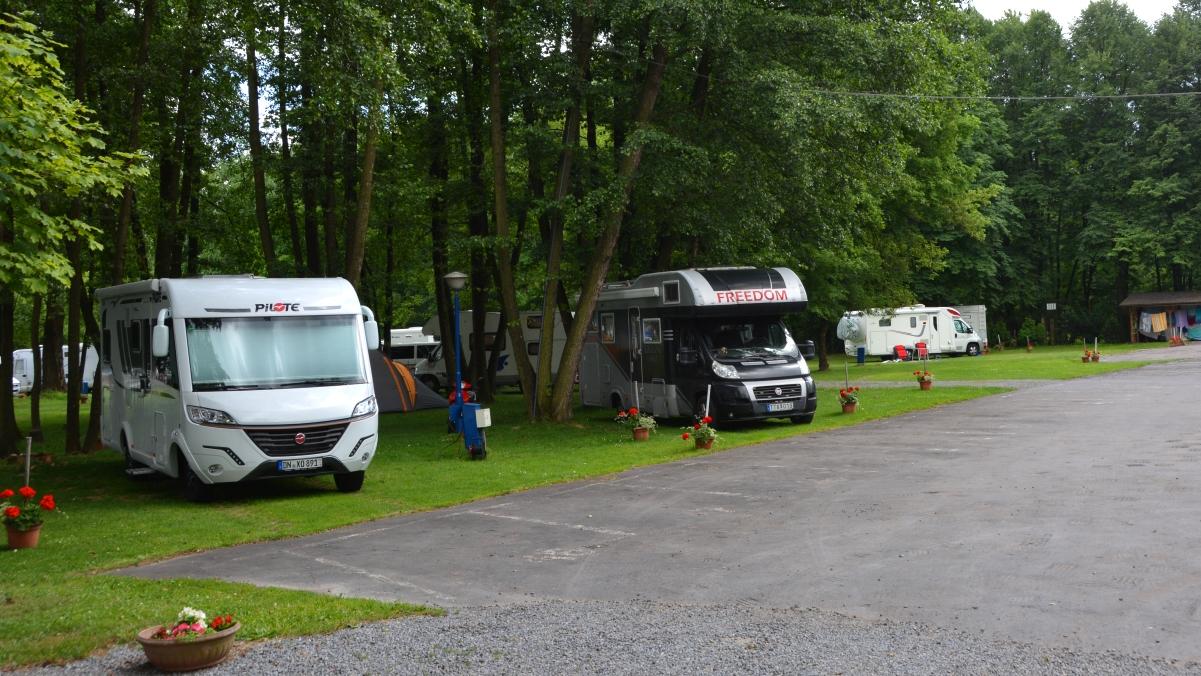 Camping Clepardia