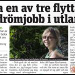 Svenskar tar inte drömjobb utomlands