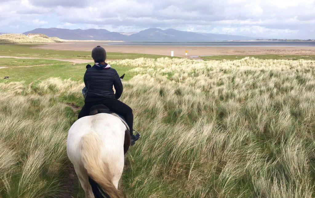 Hästridning Irland