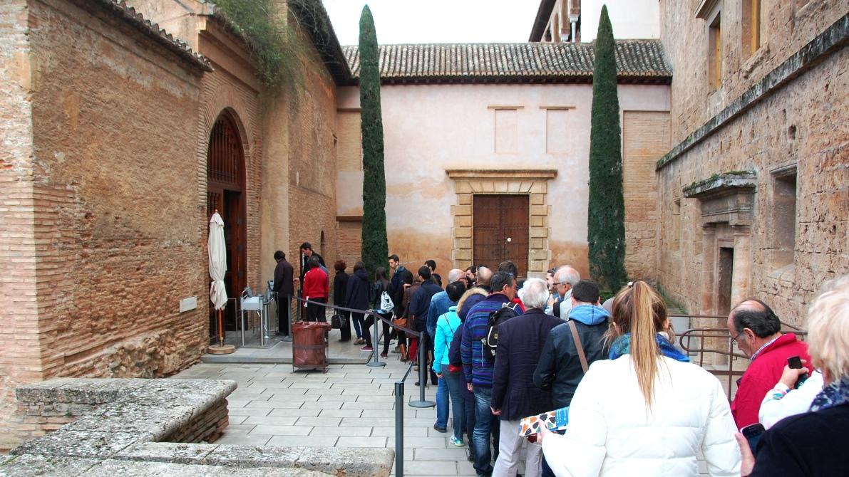 Köer, köer och köer i Alhambra