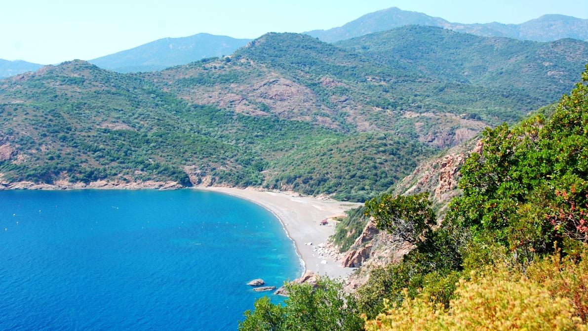 Det finns gott om paradisstränder på Korsika ...