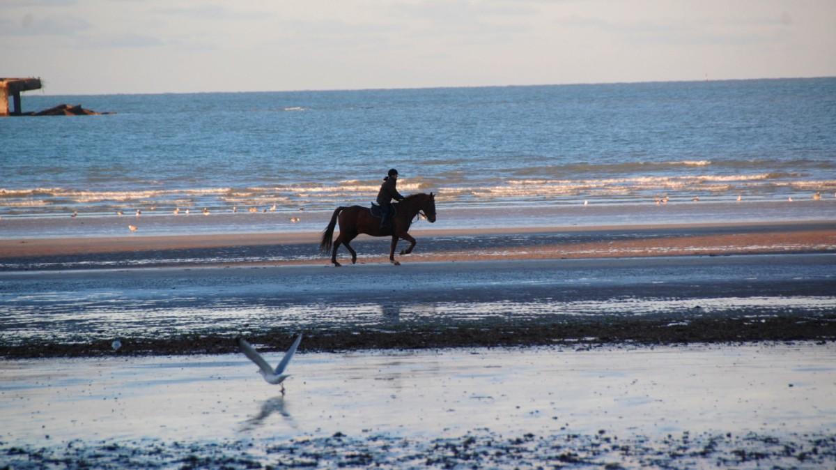 Normandie, vid Frankrikes västkust