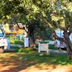Polisens camping i Tavira