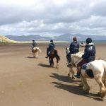 Att rida på Irland – irländska hästar i Kerry