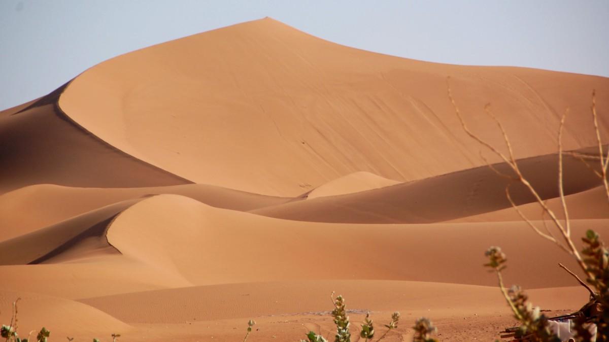 Det är inte lätt att stava till sanddyner när man skriver resereportage - och det är inte lätt att stava till reportage heller ...