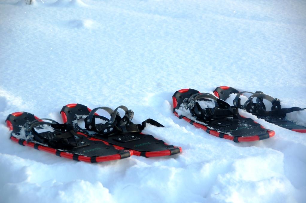 Promenad i snöskor, någon?