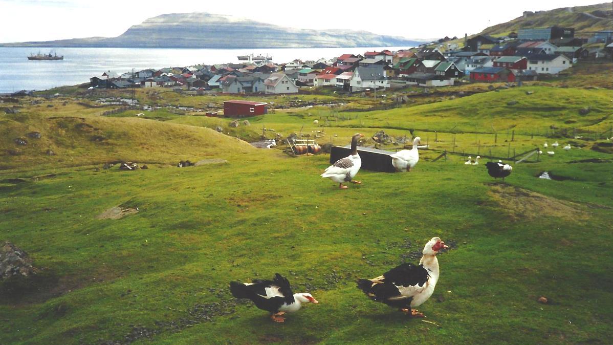 Torshavn Färöarna