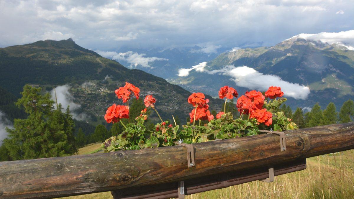 Utsikt Schweiz