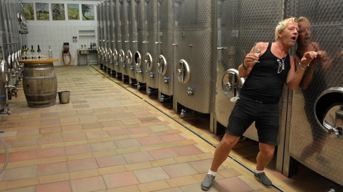 Besök på vingårdar i Tjeckien