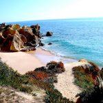 Stranden i Galé