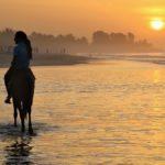 Resa till Gambia? – tips från en erfaren Gambiaresenär