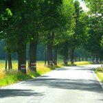 Polska vägar och camping vid bergen
