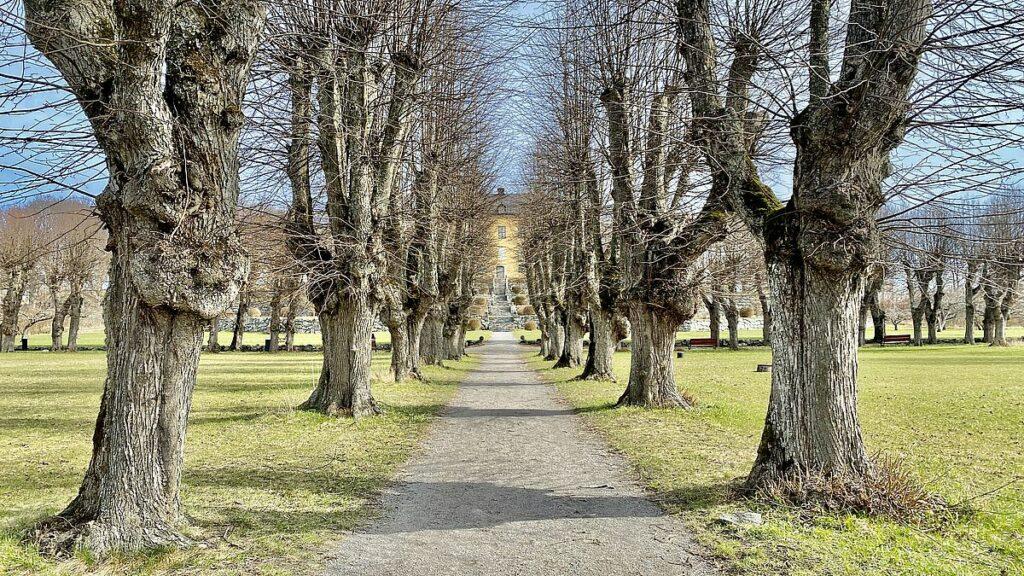 Wenngarns slott slottsträdgård