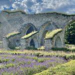 Alvastra klosterruin – och Rökstenen i Rök