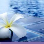 Pooldrömmar – 7 idéer för en framtida pool
