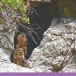 Gruvor och grottor i Tyskland – 7 spännande tips