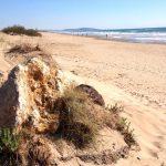 Cap d'Agde – Största nakenstaden i Frankrike