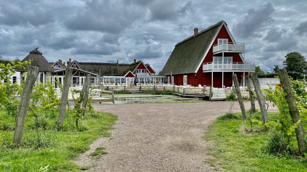 Svenska vingårdar - Arilds