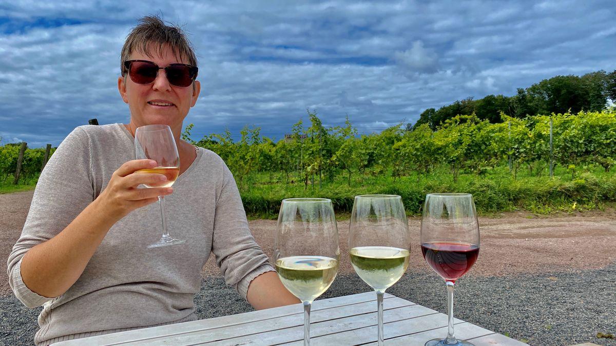 Svenska vingårdar