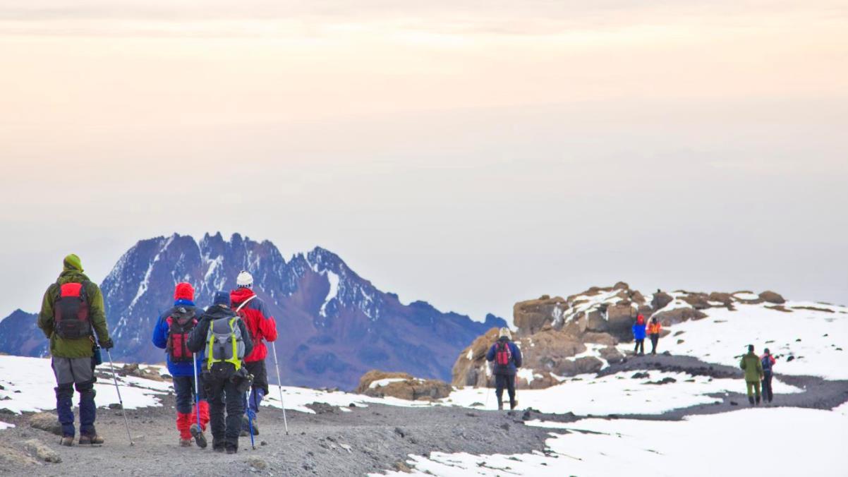 Bestiga Kilimanjaro