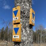 Törnskogens naturreservat – vilse två gånger på en dag