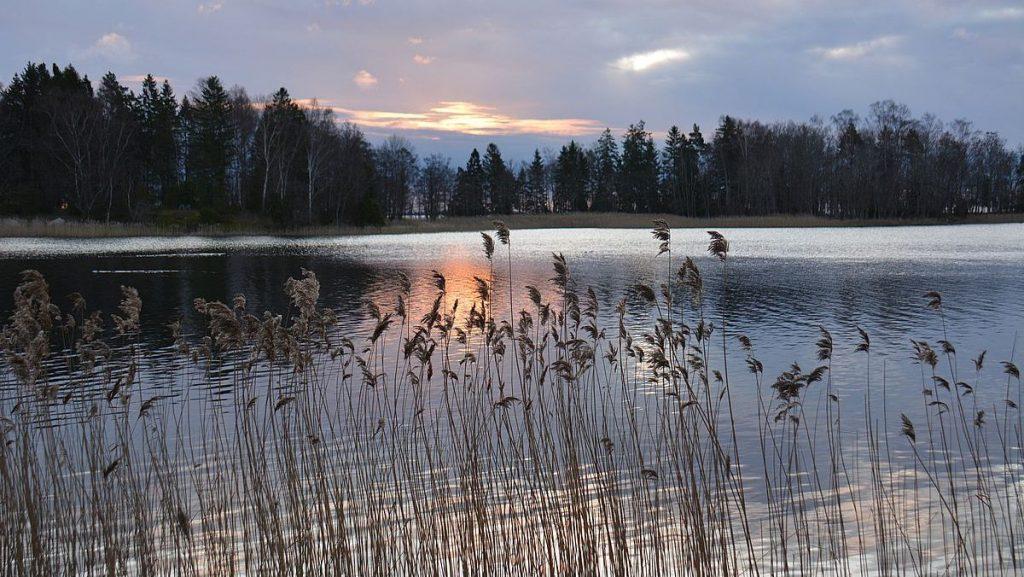 Blidö - Nyårsfirande i Stockholms skärgård