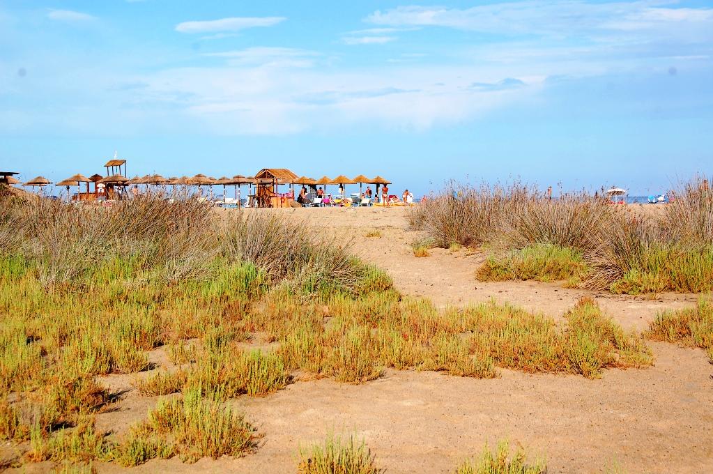 Med utsikt mot den mer befolkade delen av stranden