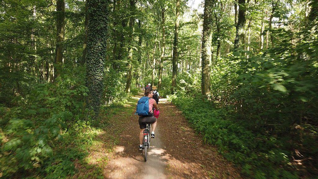 Cykla i Mecklenburg-Vorpommern