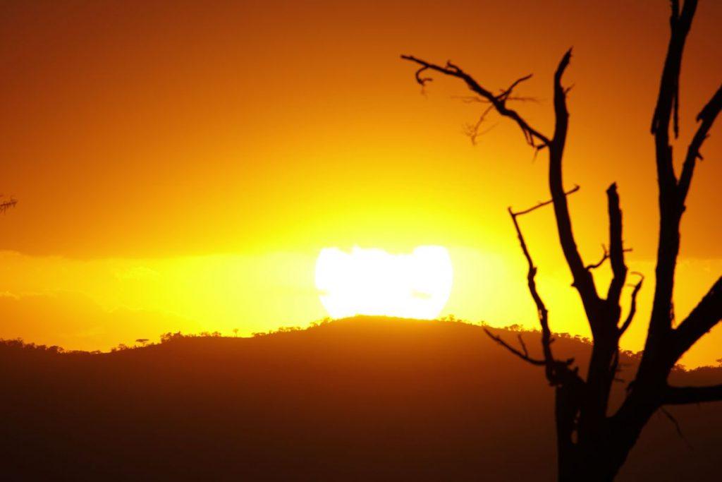 Solen safari i Kenya
