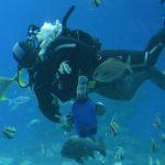 Underwater Observatory i Eilat – en värld under ytan