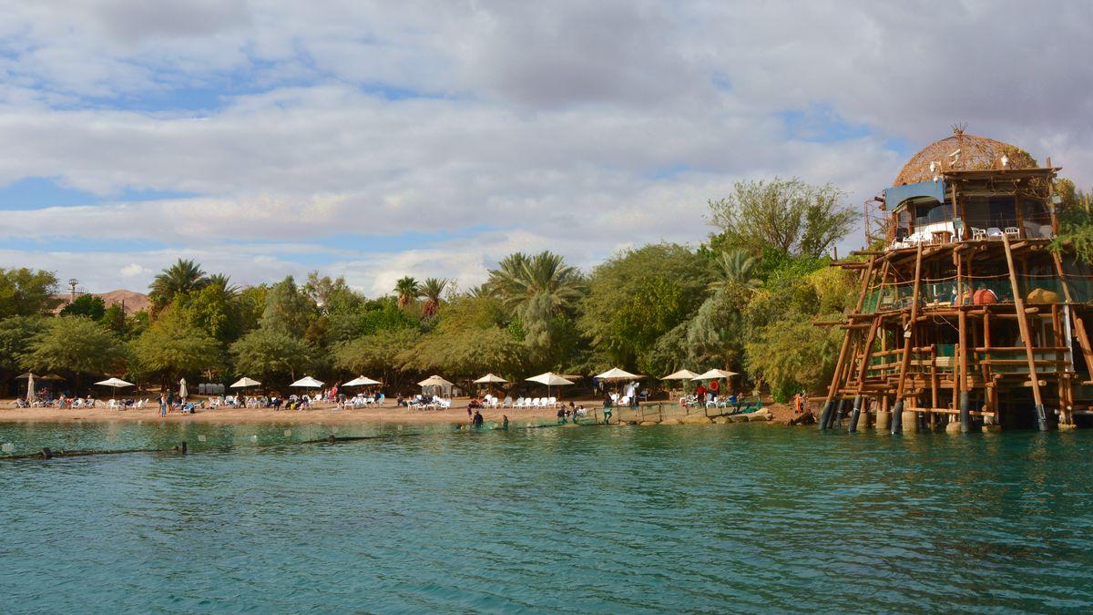Eilat Dolpins reef