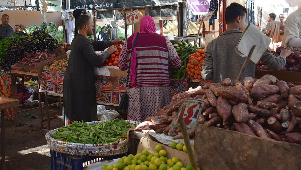 Göra i Hurghada - besöka mar