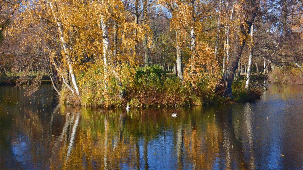 Engelska parken vid Drottningholms slott