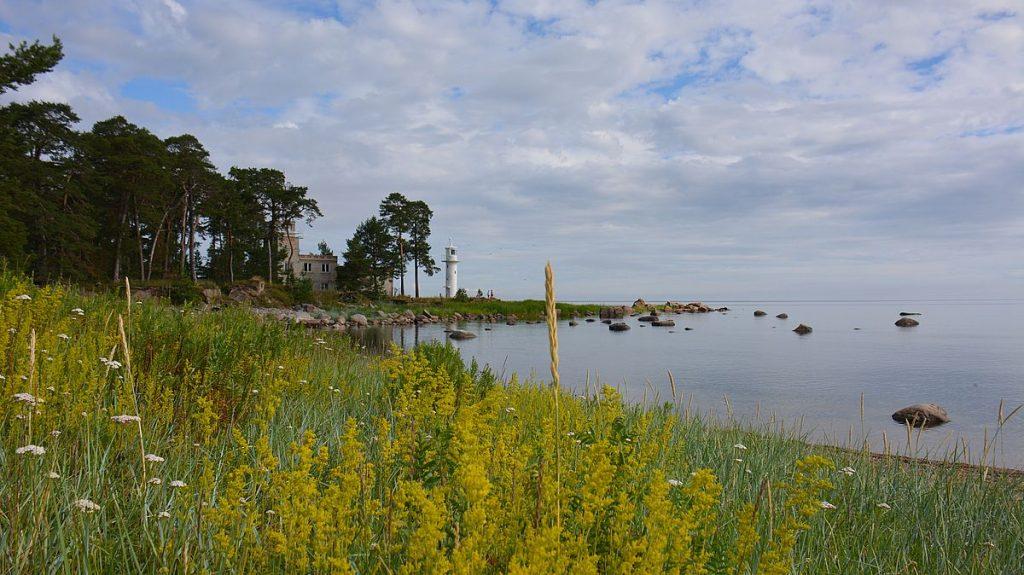 Vergi i Lahemaa nationalpark i Estland