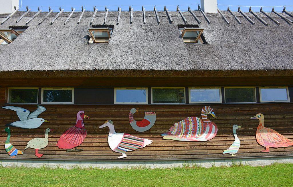 Fåglar på Kynö i Estland