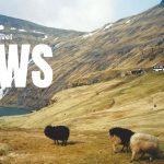 Städhelg på Färöarna och uppsving för Tunisien