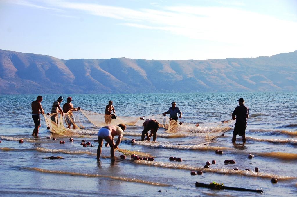 Fiskarna vittjar sina nät i Shkodersjön