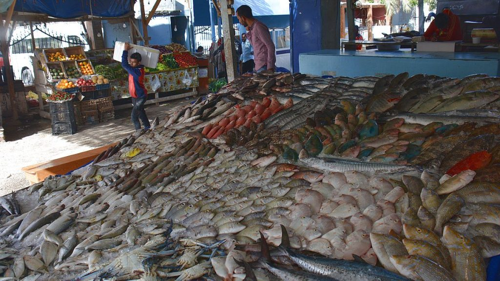 Fiskmarknad i Egypten