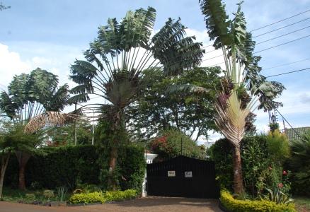 Området Gigiri i Nairobi