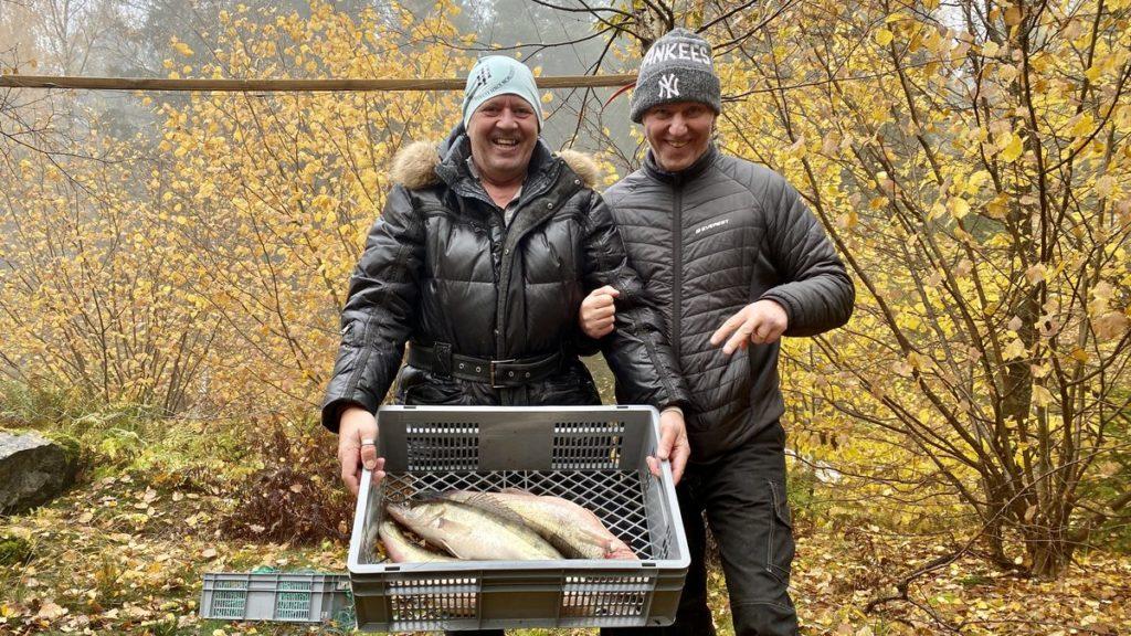 Fiska med nät i Mälaren - fångst