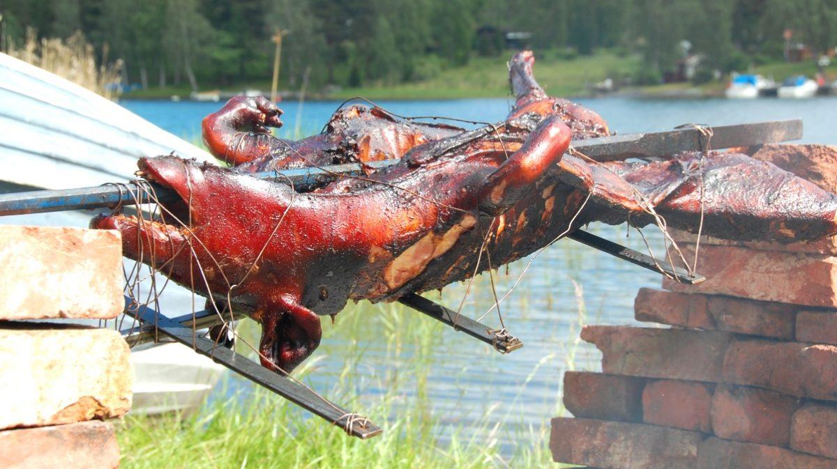 grill för helstekt gris