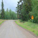 Grusväg till Lycksele – och kväll på Granö camping