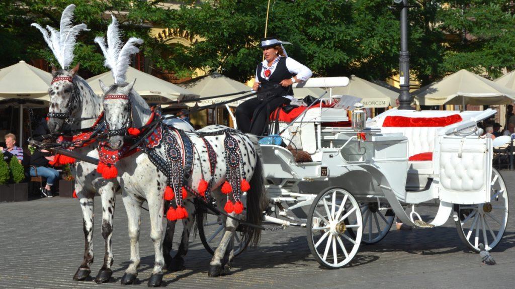 Häst och vagn i Krakow