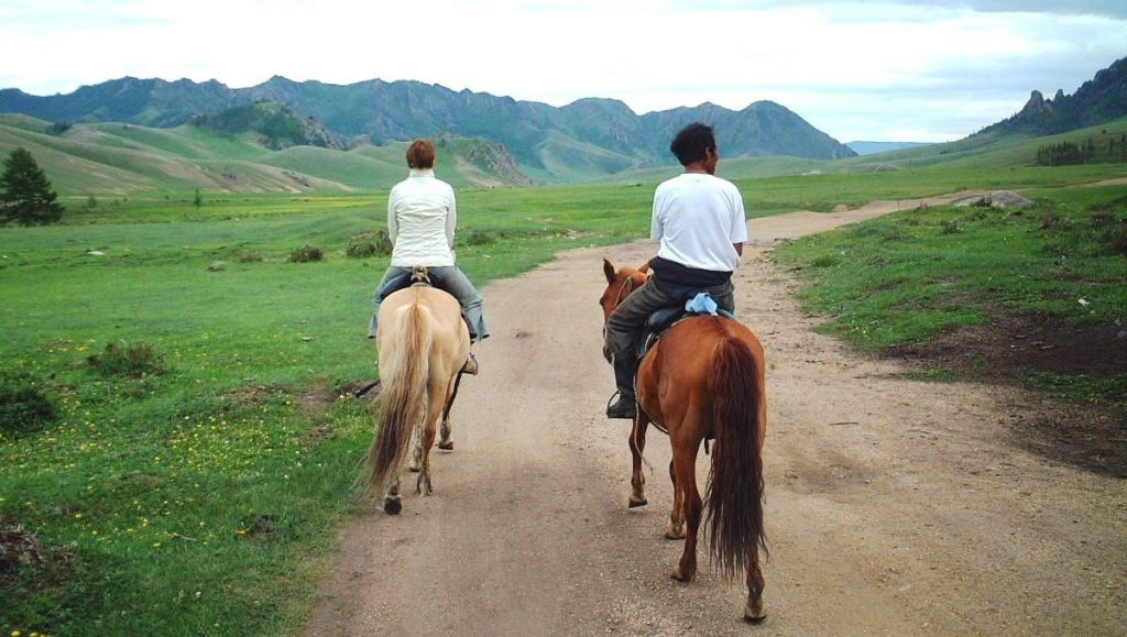 Hästar Mongoliet