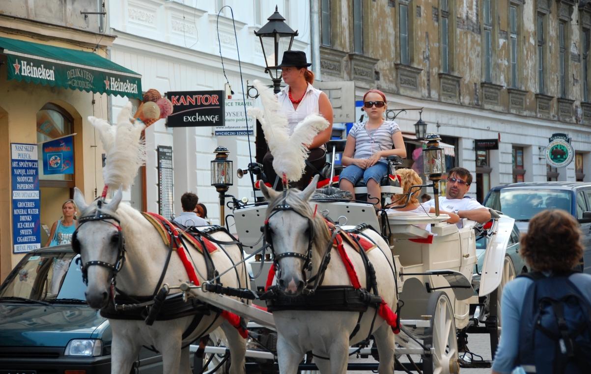 Hästar i Krakow