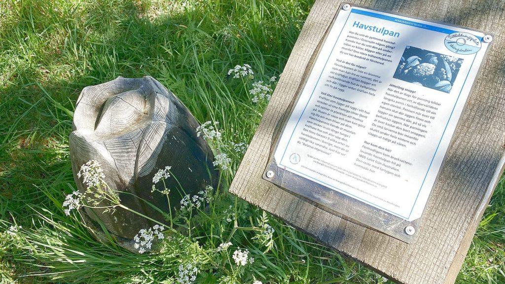 Naturstig i Riddersholms naturreservat