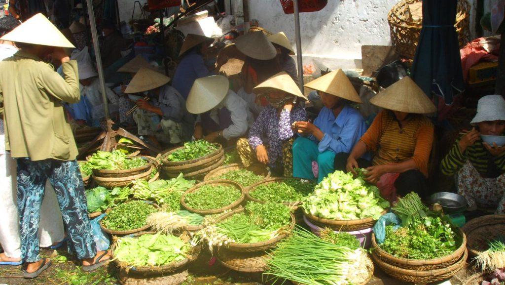 Resa runt i Vietnam