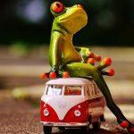 Husbilsbranschen – vad händer bakom kulisserna?