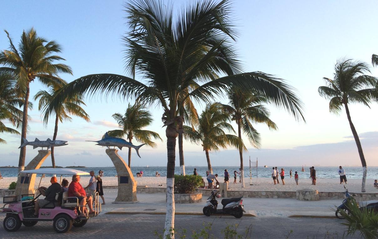 Strand med palmer